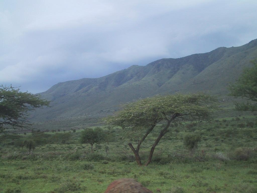 Zitate jenseits von afrika Jenseits von