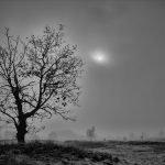 Merethe Lindstrøm - Tage in der Geschichte der Stille