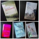 """""""Das Debüt"""" - Bloggerpreis für Literatur 2019 - Meine Entscheidung"""