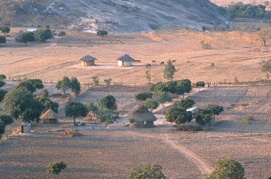 Shona-farms-zimbabwe