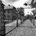 Seweryna Szmaglewska - Die Frauen von Birkenau
