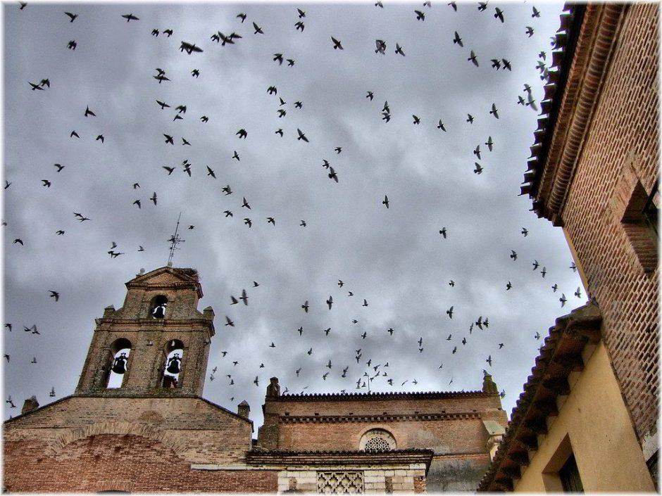 Convento Tordesillas