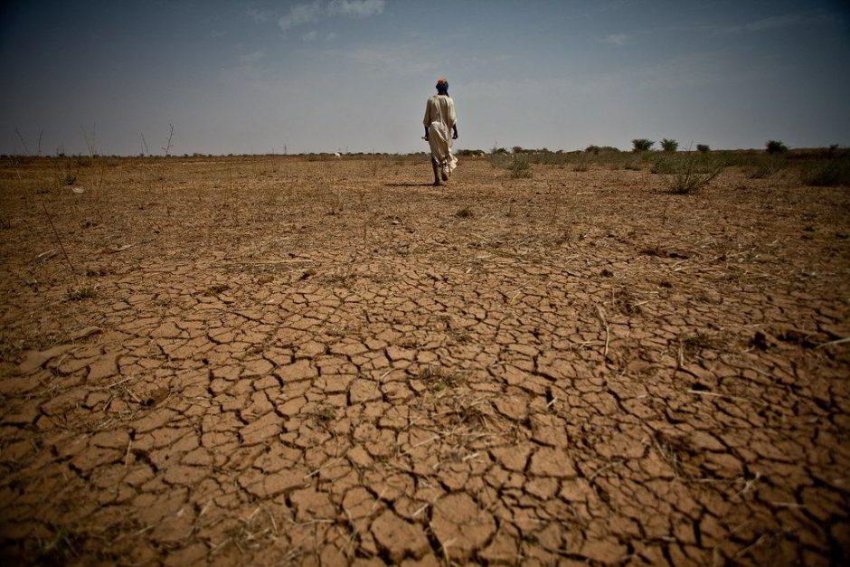Sahel-Zone